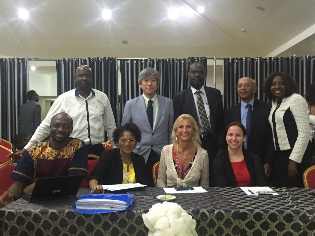 external assessors with who nigeria rep